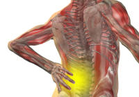 Clinical Massage Backpain Treatment